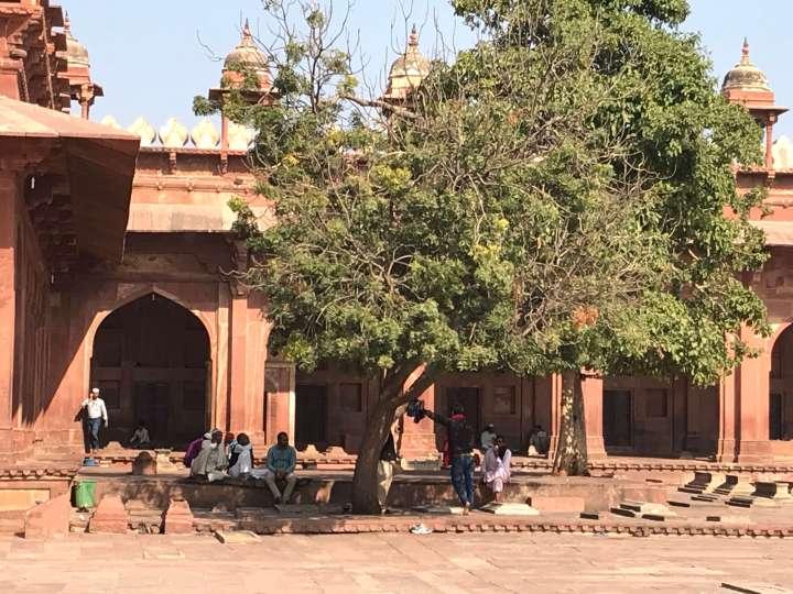 Utazás – India1.